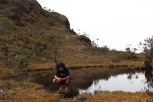 danau di leuser